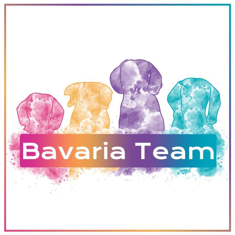 logo BavariaTeam